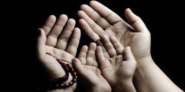 Membina jambatan kepercayaan bersama teman kesayangan anda