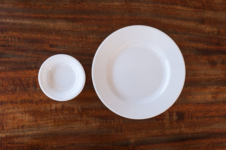 Image result for smaller plate