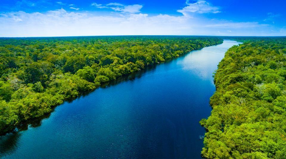 Image result for amazon river brazil