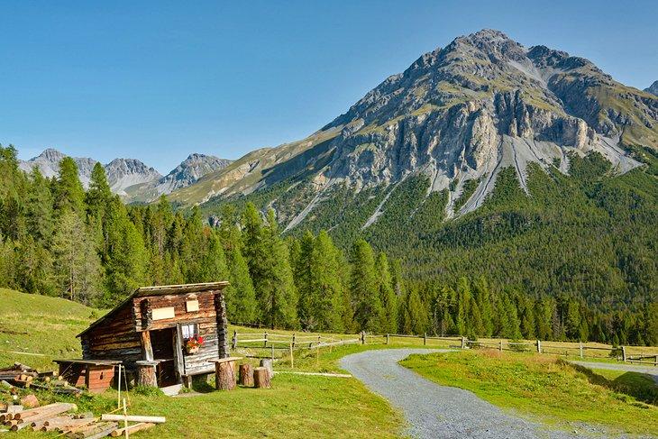 https://www.planetware.com/wpimages/2019/08/switzerland-top-tourist-attractions-swiss-national-park.jpg