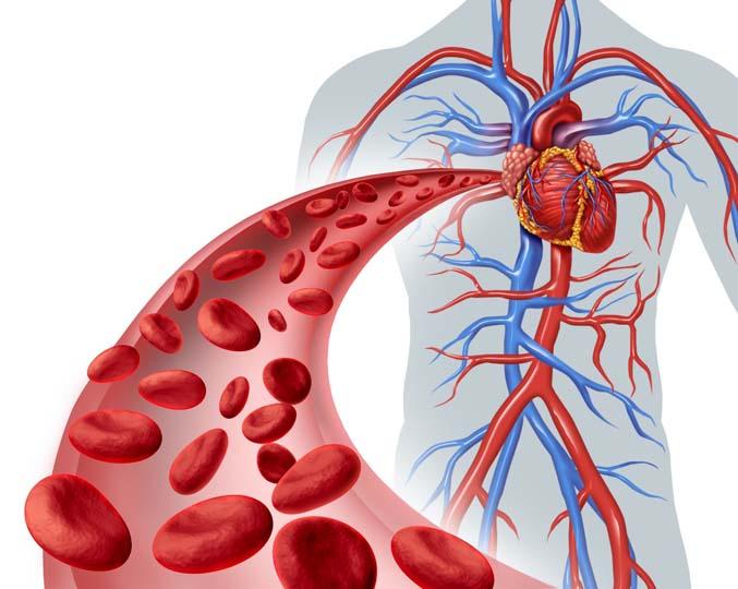 Ketahui punca dan jenis Anemia terhadap darah